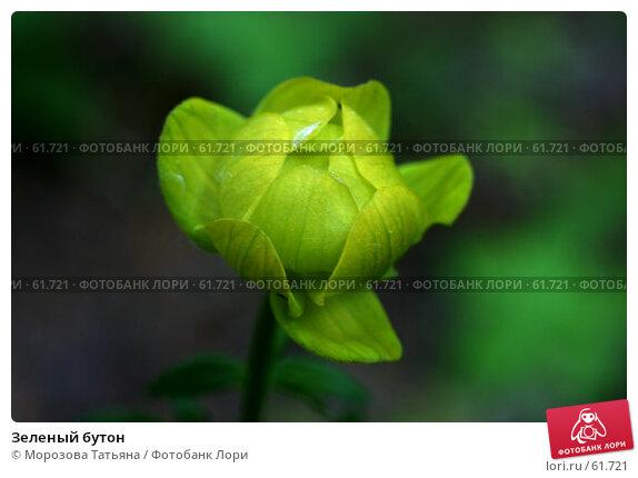 Ядовитые растения название в россии