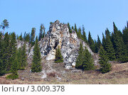 Камень Малый Шайтан. Река Койва.