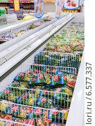 Продажа замороженных продуктов в гипермаркете, фото № 6577337, снято 25 октября 2014 г. (c) FotograFF / Фотобанк Лори