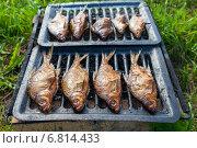 Копченая рыба домашнего приготовления лежит на решетке, фото № 6814433, снято 18 декабря 2014 г. (c) FotograFF / Фотобанк Лори