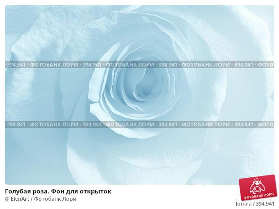 Голубая роза фон для открыток