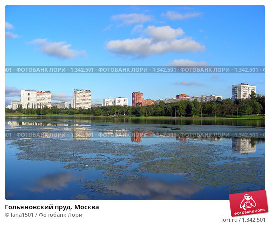 Гольяновский пруд москва фото № 1342501