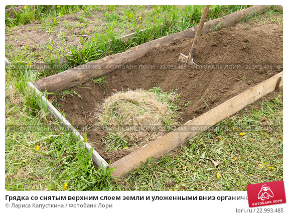 Как снять верхний слой почвы своими руками 41