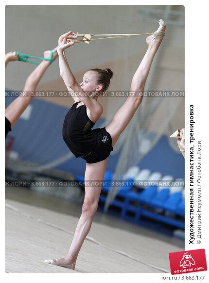 Гимнастика тренировка фото 3663177