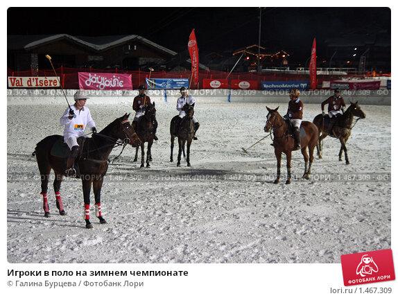 Игроки в поло на зимнем чемпионате, фото 1467309, снято 15 января 2010 г...