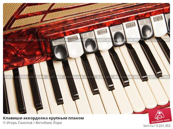 ремонт клавиш аккордеона своими руками видео