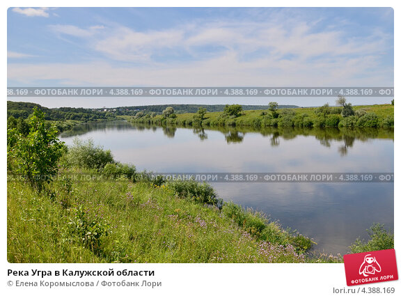 Река угра в калужской области фото