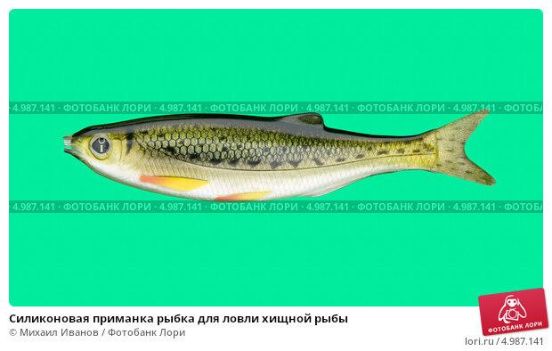 Приманки для хищной рыбы