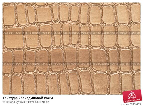 Текстура крокодиловой кожи, фото 243433.