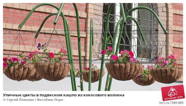 Подвесное кашпо для цветов своими руками фото