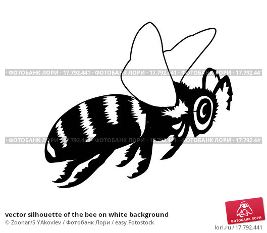 Bee black and white drawing