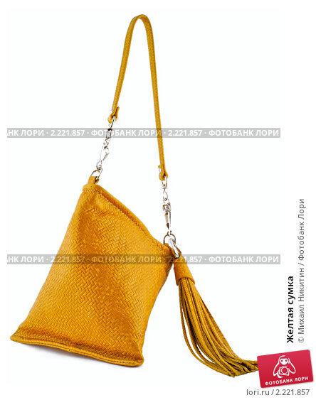 Желтая сумка, фото 2221857, снято 16 декабря 2010 г. (c) Михаил Никитин...