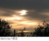Купить «Сумерки », фото № 453, снято 11 августа 2004 г. (c) Ирина Терентьева / Фотобанк Лори
