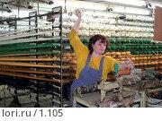 Купить «Сотрудница текстильного производства», фото № 1105, снято 20 июля 2019 г. (c) Александр Михеев / Фотобанк Лори
