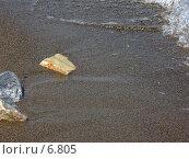 Купить «Камень в песке», фото № 6805, снято 8 июля 2006 г. (c) Маргарита Лир / Фотобанк Лори