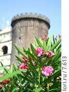 Купить «Башня неаполитанского замка», фото № 7613, снято 18 августа 2006 г. (c) Тузов Александр / Фотобанк Лори