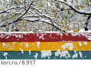 Купить «Москва. Первый снег», фото № 8917, снято 21 февраля 2019 г. (c) Юрий Синицын / Фотобанк Лори