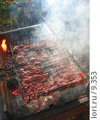 Купить «Мясо жарится на гриле», фото № 9353, снято 16 сентября 2006 г. (c) Тузов Александр / Фотобанк Лори