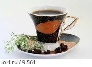 Купить «Чайная пара», фото № 9561, снято 27 июня 2006 г. (c) Ольга Красавина / Фотобанк Лори