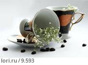 Купить «Кофейные пары, зерна кофе на белом», фото № 9593, снято 27 июня 2006 г. (c) Ольга Красавина / Фотобанк Лори