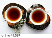 Купить «Чайный дуэт», фото № 9597, снято 27 июня 2006 г. (c) Ольга Красавина / Фотобанк Лори