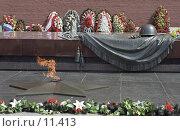 Купить «Москва, Вечный огонь у Могилы Неизвестного солдата у Кремлёвской стены», фото № 11413, снято 18 августа 2018 г. (c) Юрий Синицын / Фотобанк Лори