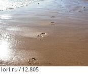 Следы на песке. Стоковое фото, фотограф Екатерина / Фотобанк Лори