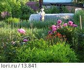 Огород. Стоковое фото, фотограф Макс / Фотобанк Лори