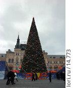 Купить «Елка на Красной площади», фото № 14773, снято 13 декабря 2006 г. (c) Roki / Фотобанк Лори