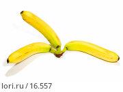 Купить «Три банана», фото № 16557, снято 11 февраля 2007 г. (c) Угоренков Александр / Фотобанк Лори