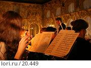 Выступление симфонического оркестра. Флейтистка. Стоковое фото, фотограф Vladimir Fedoroff / Фотобанк Лори