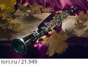 Купить «Мелодия золотой осени», фото № 21949, снято 14 декабря 2018 г. (c) Сергей Лаврентьев / Фотобанк Лори
