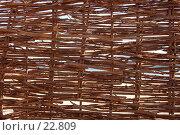 Купить «Циновка», фото № 22809, снято 10 февраля 2007 г. (c) Golden_Tulip / Фотобанк Лори