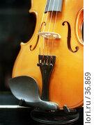Купить «Скрипка на подставке», фото № 36869, снято 17 июля 2018 г. (c) Андрей Соколов / Фотобанк Лори