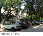 Купить «Случайный сосед. Раннее утро в Одессе», фото № 37045, снято 6 августа 2006 г. (c) Людмила Жмурина / Фотобанк Лори