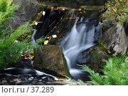 Купить «Водопадик», фото № 37289, снято 30 сентября 2005 г. (c) Сергей Лаврентьев / Фотобанк Лори