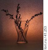 Купить «Стекло», фото № 41253, снято 21 апреля 2007 г. (c) Биржанова Юлия / Фотобанк Лори