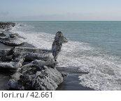 Купить «Динозавр из льда смотрит в океан», фото № 42661, снято 30 апреля 2007 г. (c) Maxim Kamchatka / Фотобанк Лори