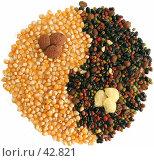 Купить «Кукуруза, кофе и фасоль», фото № 42821, снято 8 февраля 2006 г. (c) Татьяна Белова / Фотобанк Лори