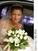 Прекрасная невеста. Стоковое фото, фотограф Морозова Татьяна / Фотобанк Лори
