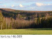 Купить «Лесной пейзаж Пермской области с освещенным полем на переднем плане», фото № 46089, снято 14 июня 2005 г. (c) Harry / Фотобанк Лори