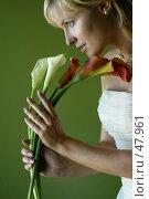 Букет. Стоковое фото, фотограф Морозова Татьяна / Фотобанк Лори