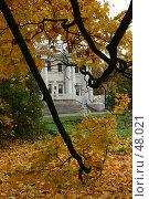 Купить «Санкт-Петербург, Елагин дворец», фото № 48021, снято 15 октября 2006 г. (c) Александр Секретарев / Фотобанк Лори