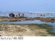 Купить «Сбор водорослей жителями острова Бали в Индонезии», фото № 48489, снято 17 ноября 2004 г. (c) Татьяна Белова / Фотобанк Лори