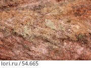 Купить «Розовый песчаник и лишайники», фото № 54665, снято 4 июля 2007 г. (c) Eleanor Wilks / Фотобанк Лори