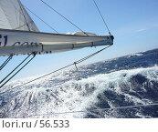 Яхта, парусный спорт. Стоковое фото, фотограф Знаменский Олег / Фотобанк Лори