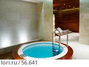 Купить «Интерьер. бассейн», фото № 56641, снято 12 октября 2006 г. (c) Ирина Мойсеева / Фотобанк Лори