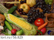 Купить «Дары природы, лето», фото № 56829, снято 30 июня 2007 г. (c) Знаменский Олег / Фотобанк Лори