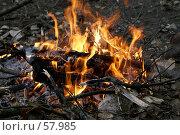 Купить «Огонь», фото № 57985, снято 30 июня 2007 г. (c) Андрей Старостин / Фотобанк Лори
