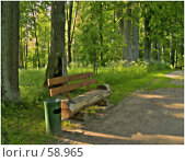 Купить «Скамейки в глубине парка», фото № 58965, снято 25 сентября 2018 г. (c) Евдокимова Мария Борисовна / Фотобанк Лори